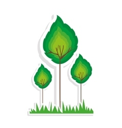 Trees and grass icon image vector