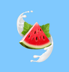 watermelon in yogurt or milk vector image