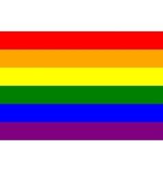 Rainbow gay pride flag symbol of LGBT movement vector image