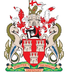New Castle Coat-of-Arms vector image