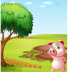 A pig introducing the pig farm vector
