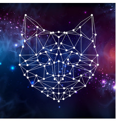 Abstract polygonal tirangle animal cat vector