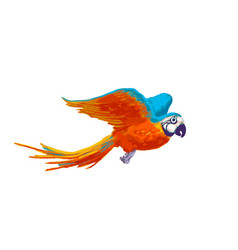 bright colorful flying parrot cartoon animal on vector image