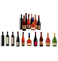 Super group of bottles vector