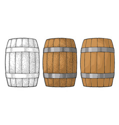 wooden barrel with metal hoops engraving vector image
