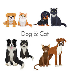 Dog and cat promotional poster with grown animal vector