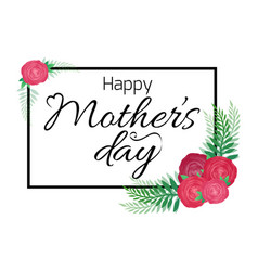 happy mothers day card with roses and calligraphy vector image