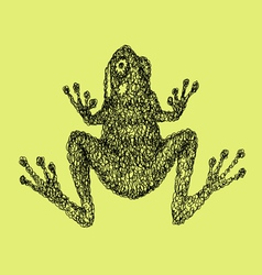 Frog abstract artistic lines vector image vector image