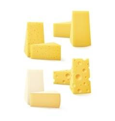 Set of triangular pieces kind cheese on background vector