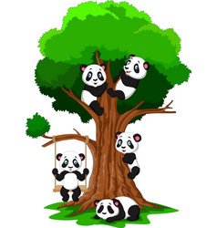 Cartoon baby panda playing on a tree vector