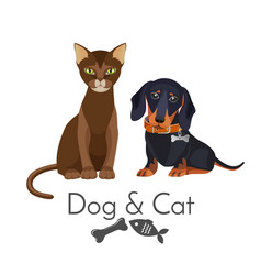 Dog and cat of pure breed promotional poster vector