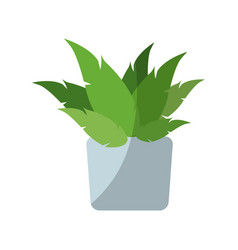 Green plant icon vector