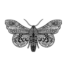Hand drawn magic butterfly vector image