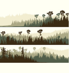 horizontal banners dark green forest valley vector image