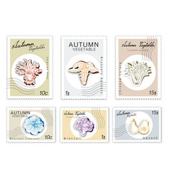 Post stamps set of autumn vegetables with paper cu vector