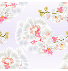 Seamless texture stem orchids white flowers vector