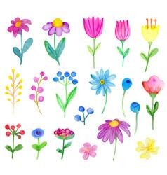 set watercolor flowers vector image