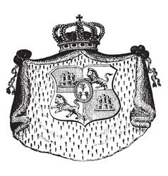 spanish coat of arms symbolizes the country and vector image