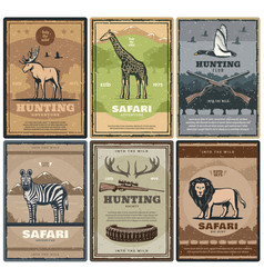 wild safari animals hunter club vector image