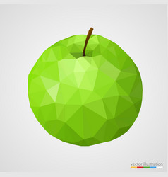 Abstract green apple vector