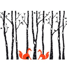 Cute foxes with birch trees vector