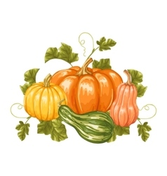 Design element with pumpkins Decorative ornament vector image