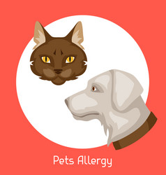 Pets allergy for medical vector