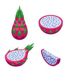 pitaya icons set isometric style vector image