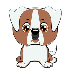 a of an american bulldog puppy vector image