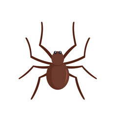 Grass spider icon flat style vector