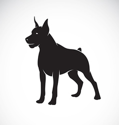 image of an dog Great Dane vector image