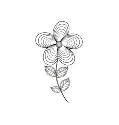jasmine flower decoration line vector image vector image
