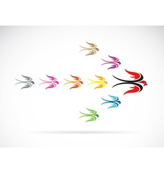 group of colorful swallow birds vector image