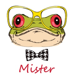 Portrait of a frog on a white background with glas vector image