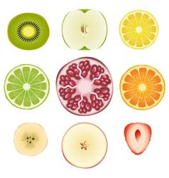 Fruit Slice Set vector image