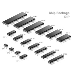 Chip Package vector image vector image