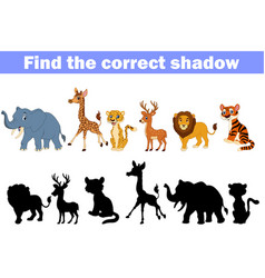 find the correct shadow africa animals vector image