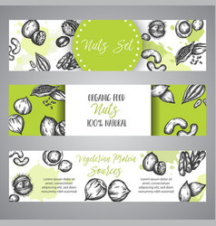 nuts and seeds banner set hand drawn vector image