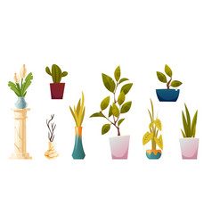 plants in pots potted houseplants and flowers vector image