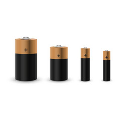 Realistic alkaline battery set isolated on white vector