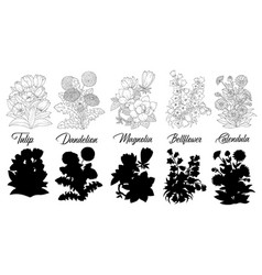 set black and white outline flowers vector image