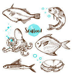 Vintage hand drawn fish vector