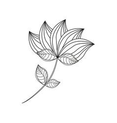lotus flower decoration line vector image vector image