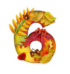 autumn stylized alphabet with foliage digit6 vector image
