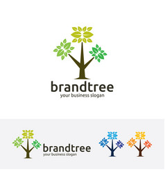 brand tree logo design vector image