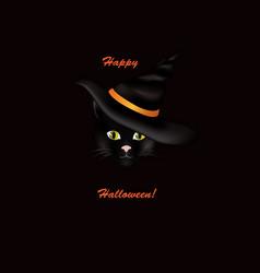 cat in hat black cat looking at camera in vector image