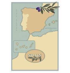 spain map with olives branches and olive leaves vector image
