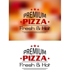 Premium Pizza Fresh and Hot poster design vector image vector image