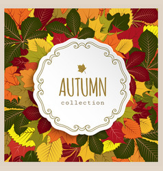 autumn label with yellow leaves vector image vector image