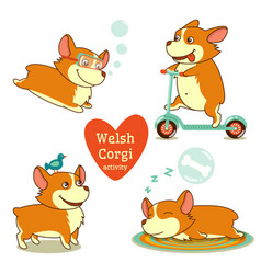 Welsh corgi activity diving scooter bird sleep vector